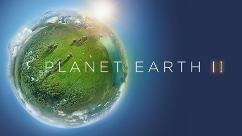 bbc one planet earth ii next on