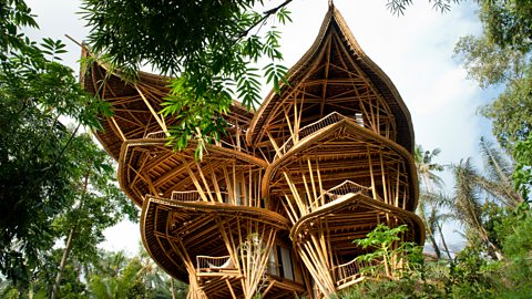 Bali's 'magic' bamboo homes