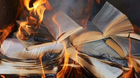 The books the Nazis almost destroyed