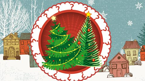 Your Christmas tree's carbon footprint