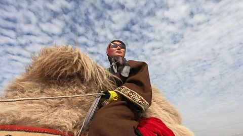 From Mongolia to the UK by camel
