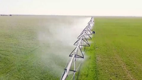 Farming where it doesn't rain