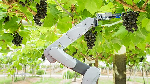 The high-tech farming revolution