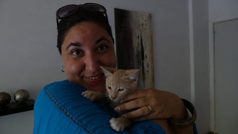 The woman who's saving Buenos Aires' abandoned cats