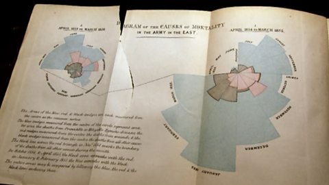Bbc Four The Beauty Of Diagrams Florence Nightingale