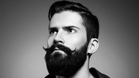 bbc 15 excellent facts we ve learned about beards