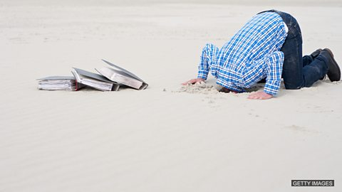 To bury your head in the sand