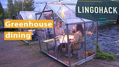Greenhouse dining