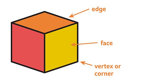 The properties of a 3D shape: edge, face and vertex or corner.