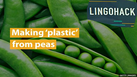 Making 'plastic' from peas
