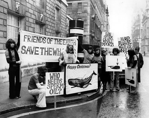 Save the whale protest