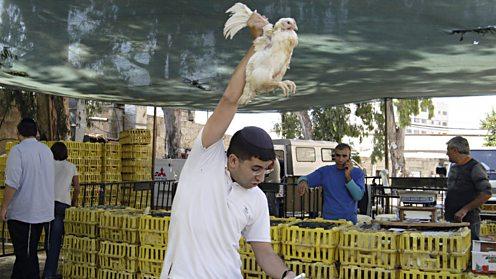 Kaparot market in Jerusalem