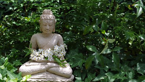 Buddha statue with flowers and plants