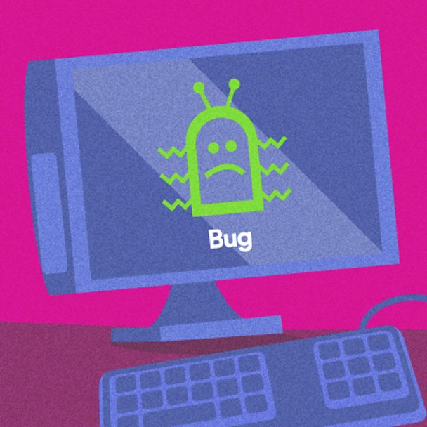 What are computer bugs?