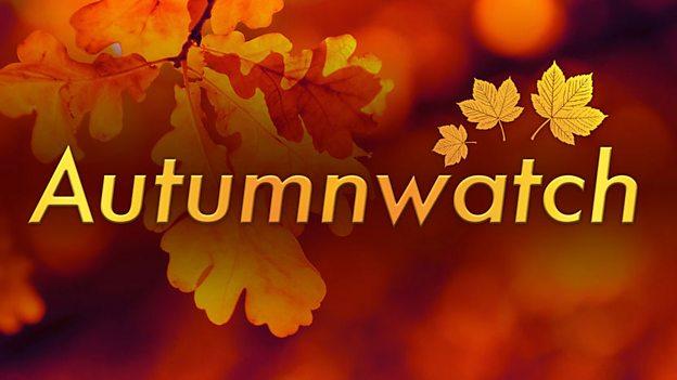 Autumnwatch unsprung online dating