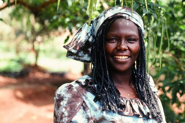 The Woman Who Planted 50m Trees With A Little Help Bbc Ideas