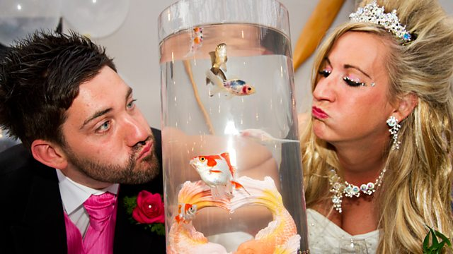 Don't Tell The Bride, Series 6, Ian And Hayley