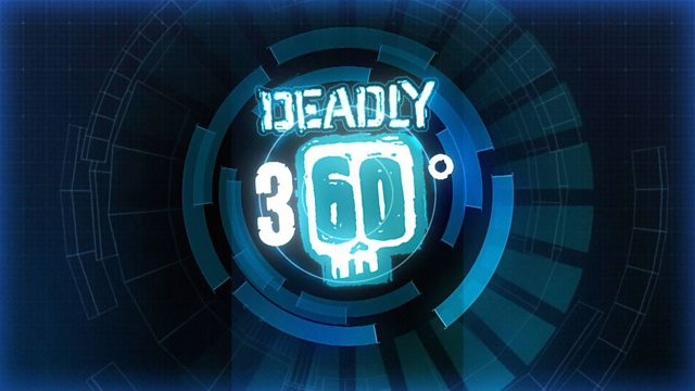 Deadly 360