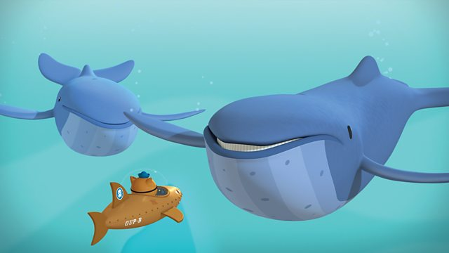 The Mixed Up Whales Series 1 Octonauts