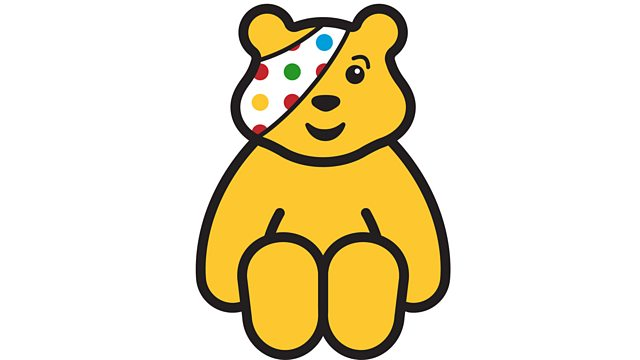 Image result for pudsey
