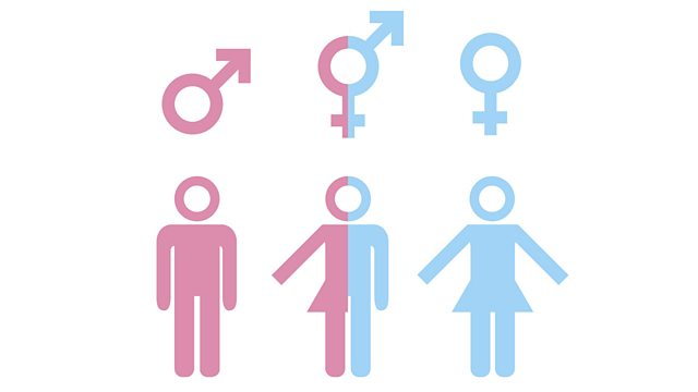 bbc world service the inquiry do we have enough genders