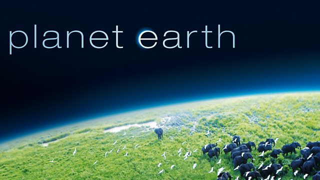 From Pole to Pole ‹ Planet Earth