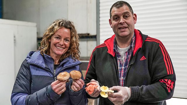 BBC Two - Back to the Land with Kate Humble, Series 2