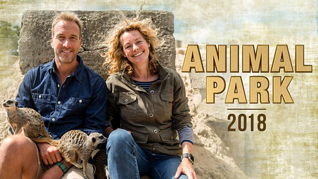 Image result for animal park summer special 2018