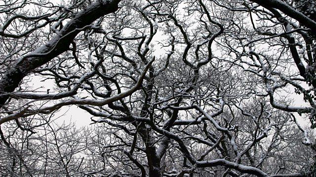 Pilgrim: BBC Radio 4 Supernatural Radio Drama Returns for 2-Part Winter Special