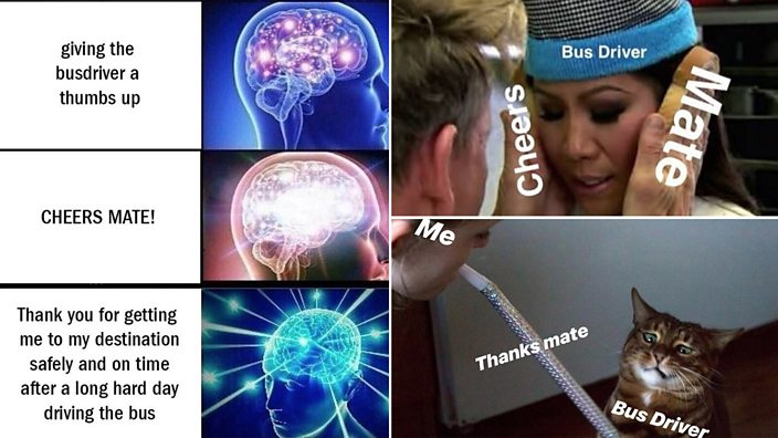 Some of the bus driver memes posted on Brown Cardigan's Instagram page