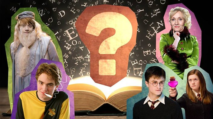 Harry is immortal': Seven Harry Potter theories that will blow your