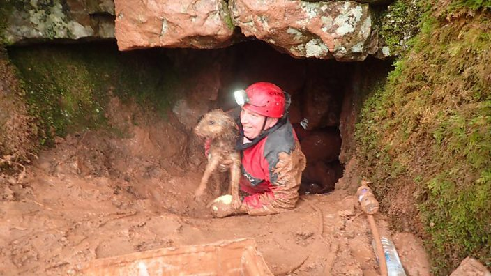 Dog being rescued from cave