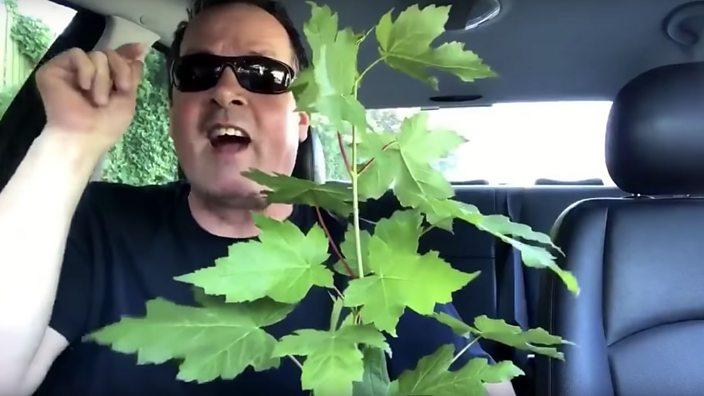 Screenshot of Chunky Marks video
