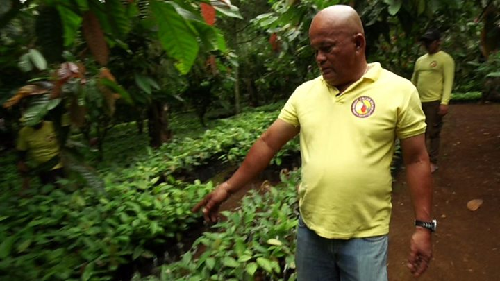Filipino farmer strikes gold with cocoa - BBC News