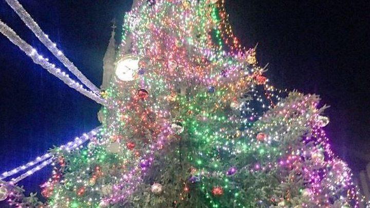 christmas trees leicester nc