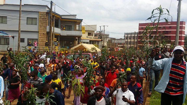 """Résultat de recherche d'images pour """"image des problèmes au nord ouest du cameroun"""""""