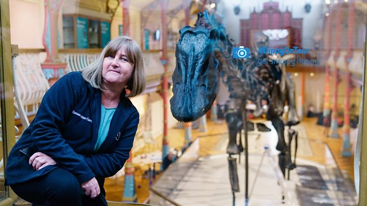 Famous dinosaur Dippy begins its journey to the North East