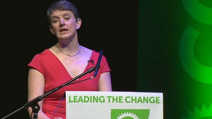 Scottish Greens 'leading change' in Scotland