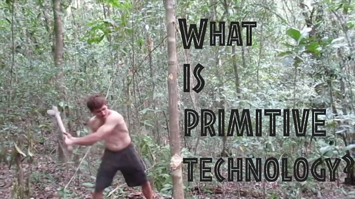 What is 'primitive technology' and why do we love it?