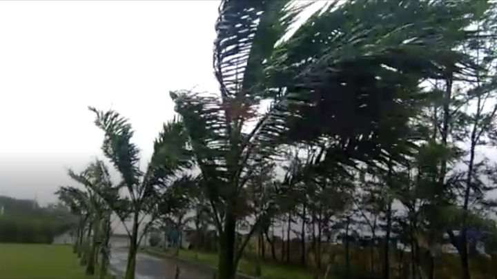 Cyclone Fani lashes India's eastern coast