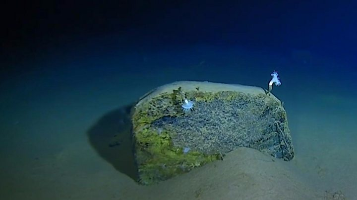 Sub dive in Mariana Trench breaks records