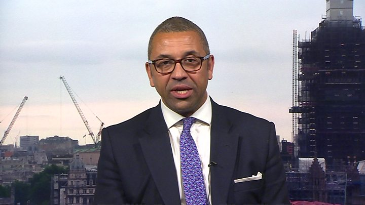 James Cleverly pulls out of Conservative leadership race