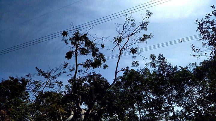 Pemadaman Listrik Tiga Ledakan Sebelum Listrik Jabodetabek Padam