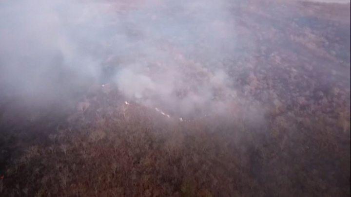 アマゾン熱帯雨林で火災相次ぐ 大統領はNGO批判も証拠示さず
