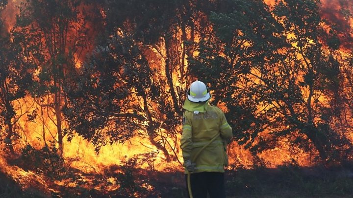 Australia bushfires: Record number of emergencies in New South Wales 1