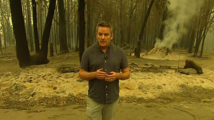 Australia bushfires spark 'unprecedented' climate disinformation