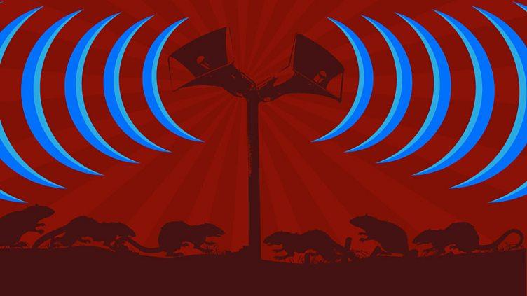 Programme image
