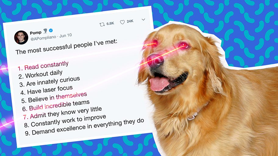 Graphic of dog with laser eyes in front of tweet of list of successful traits
