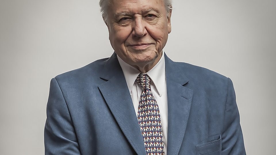 Image result for david attenborough creative commons