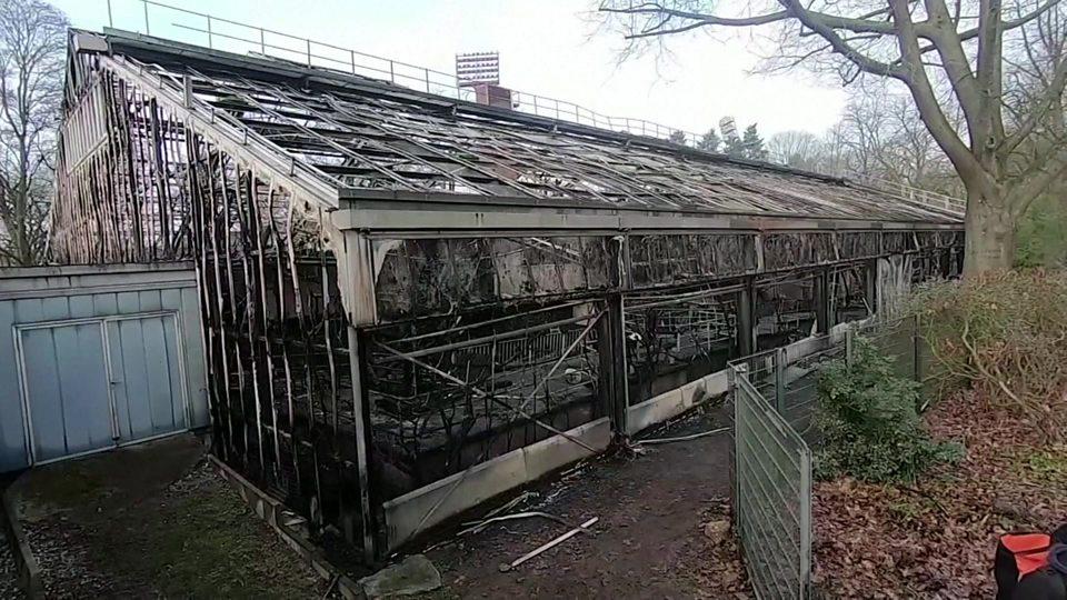 Fire Kills Monkeys At German Zoo